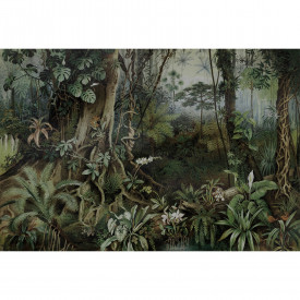 Valokuvatapetti jungle 2 DD110696 Livingwalls Walls by Patel