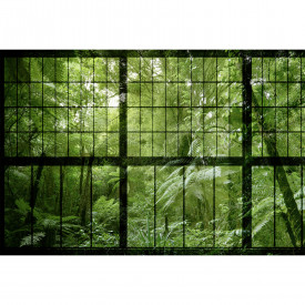Valokuvatapetti rainforest 2 DD113742 Livingwalls Walls by Patel