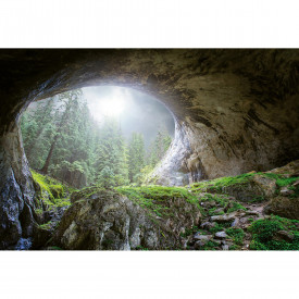 Valokuvatapetti Cave In The Forest DD118919 A.S. Création Designwalls