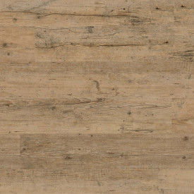 """Project Floors Click Collection/55 """"PW 4140"""""""